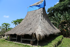 Wologai village, Flores (nick taz) Tags: wologai village flores indonesia indigenous hut