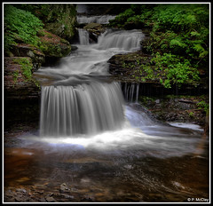 RB Ricketts Falls (pandt) Tags: hdr rickettsglen pennsylvania rbrickettsfalls longexposure water falls waterfall outdoor nature flickr forest green lush beauty beautiful canon eos slr 6d