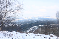 Snow on the Hills and Housetops (Dave Roberts3) Tags: snow winter gaerhillfort hills hilltop trees newport twmbarlwm houses housetops road coedmelynpark landscape cymru wales xmas happychristmas merrychristmas nadoligllawen