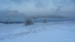 Vosges (Jean-Paul Wagner) Tags: vosges alsace hautrhin hivers neige sony24105mmf4goss sonya9