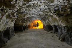 The silex vein (palateth) Tags: lightpainting lightart night nophotoshop singleexposure cave backlightscanner mushrooms