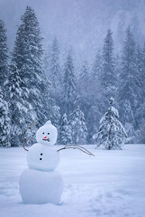 Snowman in El Cap Meadow (optimalfocusphotography) Tags: northerncalifornia california usa landscape winter nature nationalpark yosemitenp yosemitenationalpark trees sierranevada yosemite snow