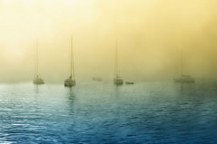 Ghostly Vessels (somewheredowntheroadphoto) Tags: boats ships water fog foggy light shadows shadow color colorful fkoat floating drift drifting sail sailing