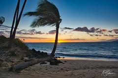 One More (Kirt Edblom) Tags: maui mauihawaii kihei kiheihawaii hawaii beach scenic serene sand gaylene wife water waves waterscape milf wave tree trees tropical sunset sunlight sun sundown blue bluesky bluewater clouds pacific pacificocean ocean orange kirt kirtedblom edblom luminar nikon nikond7100 nikkor18140mmf3556