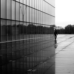 Bordering (pascalcolin1) Tags: paris13 homme man pluie rain reflets reflection line ligne bord board photoderue streetview urbanarte noiretblanc blackandwhite photopascalcolin 50mm canon50mm canon