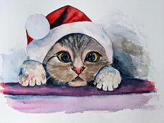 Christmas Kitty (mariola aga) Tags: cat kitty christmaskitty watercolor painting mypainting art artwork phonephotography