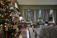 Getting Ready For Christmas (The VIKINGS are Coming!) Tags: library christmas estate mansion marble fireplace holidays golfcourse furnishings european georgian traditional california realestate