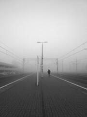 Warsaw 2019 (Warsaw Street) Tags: streetphotography street warszawa streetshot fog streetpassionaward rawstreet blackandwhite monochrome bnw ulica fotografiauliczna strasse blackwhite