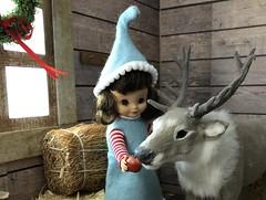 4. Feeding Vixen (Foxy Belle) Tags: christmas barn reindeer santa diorama doll 16 scale vintage felt betsy mccall tiny 9 elf costume handmade sew ooak wooden hay team caribou flocked miniature animal scene window