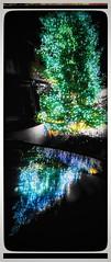 2019-12-23_08-36-15 Zeit. (eagle1effi) Tags: christbaum christmastree christmastime herma spiegelung citroëngrandc4picasso visiovan reflectionslovers reflexionen artandexpression artmeetsphotography postprocessing kunst