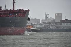 Havens (Hugo Sluimer) Tags: haven harbour harbourphotography harbourphoto havenfotografie havenfoto nlrtm nl nikon nikond500 d500 rotterdam onzehaven nlrt nederland zuidholland holland