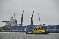 Havendienst 10 (Hugo Sluimer) Tags: haven harbour harbourphotography harbourphoto havenfotografie havenfoto nlrtm nl nikon nikond500 d500 rotterdam onzehaven nlrt nederland zuidholland holland