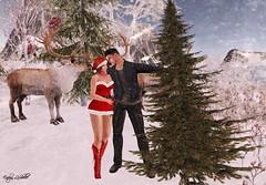 #64 .::Hazeel::. Poses - Found the tree (Enelya LeShelle.) Tags: hazeel poses couple bento pose found tree fair winter holiday blogger secondlife