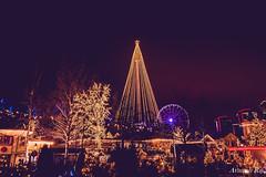 Liseberg-Christmas celebration (avanishraj) Tags: gothenburg night light christmas december liseberg amusement park