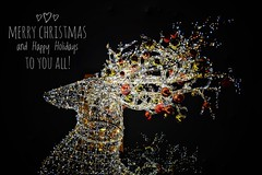 Merry Christmas and Happy Holidays to you all! (Nina_Ali) Tags: christmas decorations leicester deer merrychristmas happyholidays2019 highcrosscentredeer seasonsgreetings christmaslights joyeuxnoël froheweinachten feliznavidad buonnatale vrolijkkerstfeest wesołychświątbożegonarodzenia lowkey ninaali