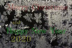 Merry Christmas (zawaski -- Thank you for your visits & comments) Tags: beauty zawaski©2012 2007 canada love naturallight calgary mikeys lovepeace night music noflash lovwparis icecrystals 4hire trek serves frost alberta zawaski©2019 paris editing ambientlight revisit canonef28135mmf3556is