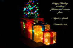 Happy Holidays (E. Aguedo) Tags: event holidays lights christmas tree bokeh gift colors december year end