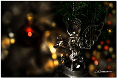 DECEMBER 2019 _1408_NGM_4411-1-222 (Nick and Karen Munroe) Tags: angel angels christmas decorations decoration bokeh creamy macro close up magnifier 10x filter karenick23 karenick karenandnickmunroe karenandnick munroe karenmunroe karen nickandkaren nickandkarenmunroe nick nickmunroe munroenick munroedesigns photography munroephotoghrpahy munroedesignsphotography nature landscape brampton bramptonontario ontario ontariocanada outdoors canada d750 nikond750 nikon nikon105f28 nikon105 nikon10528 105f28 f28 105mm 105 afs g 28 vrbokehcreamymacroclose upup colour colours color colors