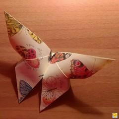 """""""Farfalla""""  Modello di A. Yoshizawa.------------------------------------------- """"Butterfly""""   Model of A. Yoshizawa. (Nocciola_) Tags: paperart cartapiegata papiroflexia butterfly paperfolding danielacarboniorigami paper yoshizawa origami farfalla"""