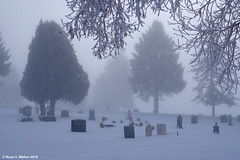 All Is Still (walkerross42) Tags: winter snow cold fog frost cemtery trees mist graveyard pine peaceful graves idaho gravestones juniper montpelier bearlakevalley
