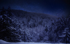 Have Yourself a Merry Little Christmas (Gio_guarda_le_stelle) Tags: christmas night snow navidad natale notte favola