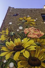 Permanent Spring (aerojad) Tags: eos canon 80d dslr 2019 autumn outdoors chicago art artinpublicplaces mural murals streetphotography streetart