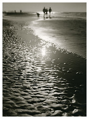 A Sunday afternoon (Mark Dries) Tags: markguitarphoto markdries darkroomprint hasselblad500cm planar 80mm28 latitude darkroom print printmaking beach bloemendaalaanzee mediumformat filmphotography
