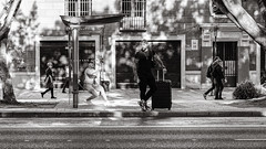 at the bus stop (Gerard Koopen) Tags: spain españa málaga city urban busstop people couple man woman luggage waiting streetlife dailylife street streetphotography light shadow blackandwhite noir blackandwhiteonly sony sonyalpha a7iii 85mm zeiss batis 2019 gerardkoopen gerardkoopenphotography