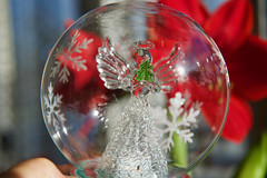 Hark! The Herald Angels Sing! (ineedathis, Everyday I get up, it's a great day!) Tags: angel crystalball ornament amaryllis red flower christmas bloom winter nature nikond750