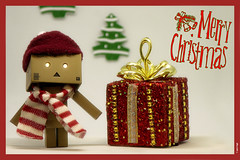 🎄 Auguri e Buon Natale a Tutti 😉 Best Wishes and Merry Christmas to Everyone 🎄 (anto-logic) Tags: danbo danboard natale berretto rosso neve inverno feste serenità luci allegria auguri nativity red cap snow winter festivities serenity lights joy greetings buonnatale merrychristmas joyeuxnoel feliznavidad froehlicheweihnachten zaligkerstfeast καλάχριστούγεννα maligayanpasko wonderful nice beautiful cute pov pointofview puntodivista dof depthoffield profonditàdicampo joyful life bokeh pretty fabulous colori bello composizione compo gioia vita gioiosa bella piacevole carino splendida meravigliosa focus eos canon