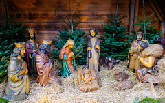 merry christmas (pauleß) Tags: cologne