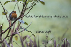 Happy Christmas (Frank Fullard) Tags: frankfullard fullard christmas happychristmas prayer wish peace joy festive xmas irish ireland blessing