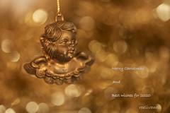 Feestelijke lichtjes / Festive lights (roelivtil) Tags: crazytuesdaytheme festivelights christmasdecoration merrychristas angel damaged bokeh goldenlight