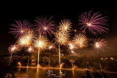 Puteaux (Damien Menil) Tags: 14 juillet feu artifice ciel sky night nuit canon 750d couleur color seine puteaux