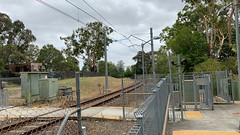 Carlingford Line: Dundas