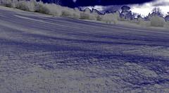 Ridge+Furrow (Tony Tooth) Tags: nikon d7100 sigma 1750mm splittone surreal ridgeandfurrow farming field mapleton derbyshire