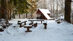 Winter in Slovakia