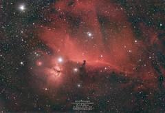 B33+ (from Bortle8 sky) (astrorock999) Tags: horsehead orion b33 c11 f2 astrometrydotnet:id=nova3875827 astrometrydotnet:status=solved