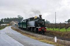CP E214 (Nelso M. Silva) Tags: steam train comboio vapor henschel sohn dampflok historico linha do vouga turismo portugal via estereita metrica e200 mallet meter narrow gauge