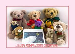A HAPPY AND PEACEFUL CHRISTMAS (fenman_1950) Tags: teddybears teddybeartuesday sonya77 christmas greeting sky poshbear bertie wellington