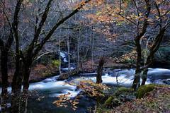 Great Smoky Mountains National Park (klauslang99) Tags: klauslang greatsmokymountainsnationalpark river water fall autumn