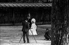 Wedding photo - Meiji Jingu (Marco Butera) Tags: wedding photo photographer groom bride traditional japan tokyo meijijingu white blackandwhite analogphotography filmphotography 35mm olympus om1 ilfordhp5