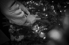 Making the Christmas tree (SzabSzalai) Tags: christmas tree age boxing day bw blackandwhite