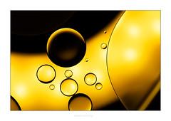 Water & Oil II (Marcus Hellwig) Tags: wasseröl wasser wateroil oilandwater ölundwasser öl oil makro macro drops licht light water gelb gold canonef100mmf28lmacroisusm canoneosrp
