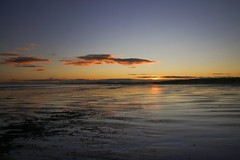 Can I wish all my friends on Flickr a Very Merry Christmas 🎄🎁📷 (Keith (foggybummer)) Tags: northsea scottishnaturalheritage sky stcyrusnnr sunset beach clouds nature reflection sand seascape waves winter