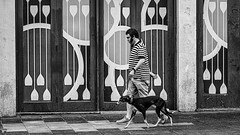 A man and his dog (Chris (a.k.a. MoiVous)) Tags: streetphotography streetlife adelaidecbd