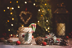 Merry Christmas to all my Flickr friends! (Chapter2 Studio) Tags: stilllife sonya7ii chapter2studio classic cup christmas holiday happiness moody merrychristmas