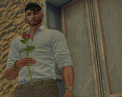 Red Roses are for you... (martincl resident) Tags: modulus mulloy volkstone coldash rkkn vexiin roses red secondlife second life blogger picture martinclovis martin clovis resident romantic