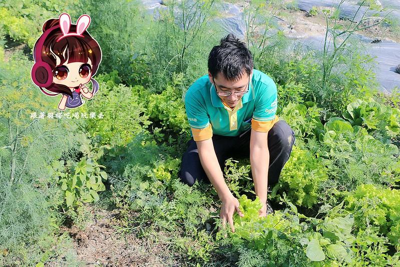 晁陽綠能體驗農場248