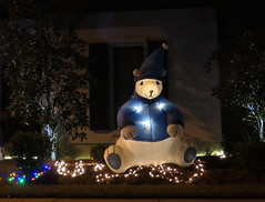A friendly Polar Bear (Monceau) Tags: christmas lights night nightime decorations 357365 365picturesin2019 365the2019edition 3652019 day357365 23dec19 smile smileonsaturday catchasmile